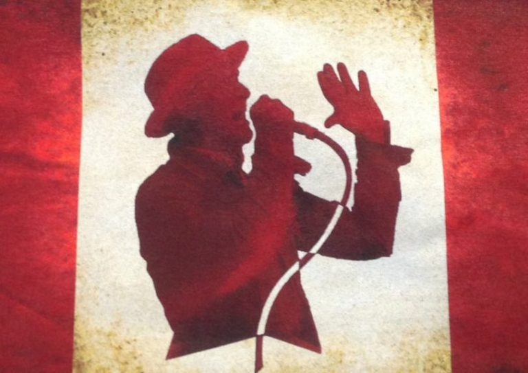 Image result for gord downie flag