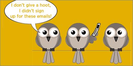 spam complaints owls