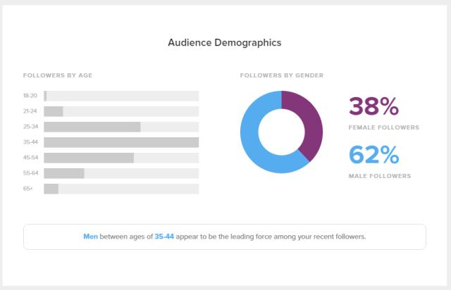 twitter demographics