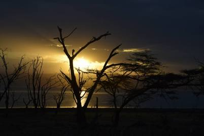 solnedgång nakuru