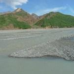 Toklat River. Denali National Park