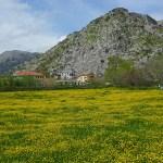 Landskapsvy. Shkodra