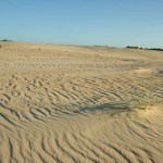 Sanddynerna vid Strahan. Tasmanien