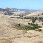 Landskap. Tasmanien