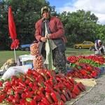 Försäljning av paprika. Perperikon