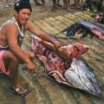 Fiskare med svärdfisk. Puerto Lopez