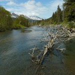 Resurrection River Trail. Seward