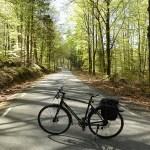 Cykling i Åkulla bokskogar. Halland
