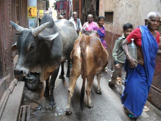 This is India! Kolkata