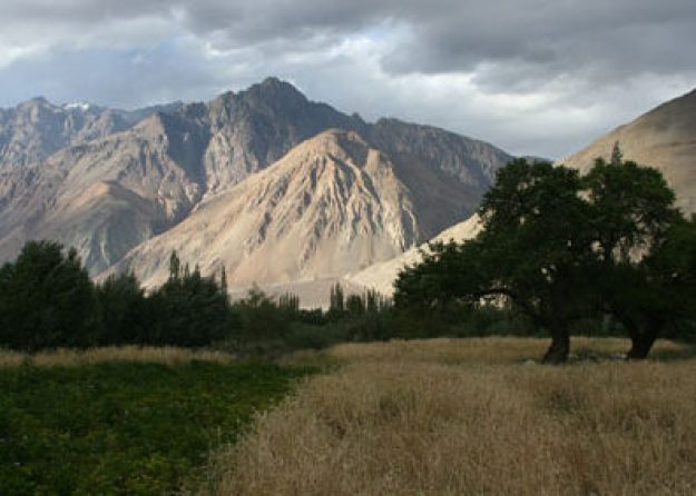 Nubra Valley. Ladakh