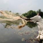 Fiske med kastnät. Thanjavur