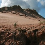 Sanddyner. Cavendish (PEI)