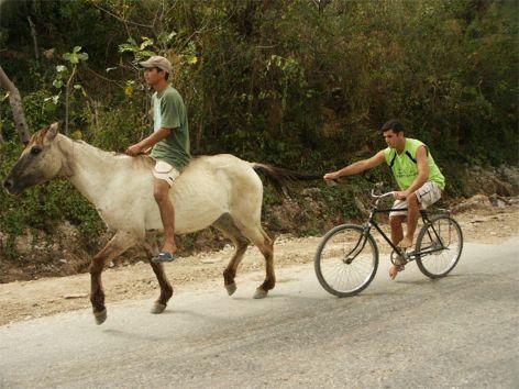 """""""En hästkraft"""". Trinidad"""