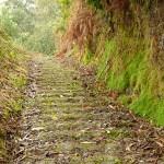 Den 400 år gamla stigen mellan Portela och Porto da Cruz