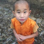 Nyfiken liten munk. Pelling