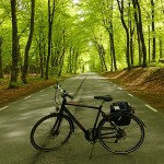 Cykling på Österlen. S:t Olof