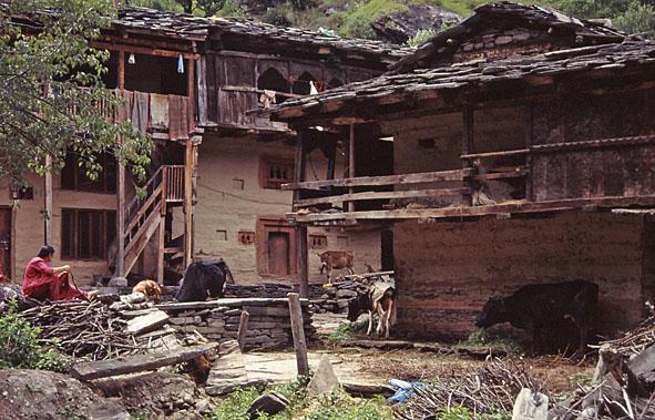 Hus. Old Manali