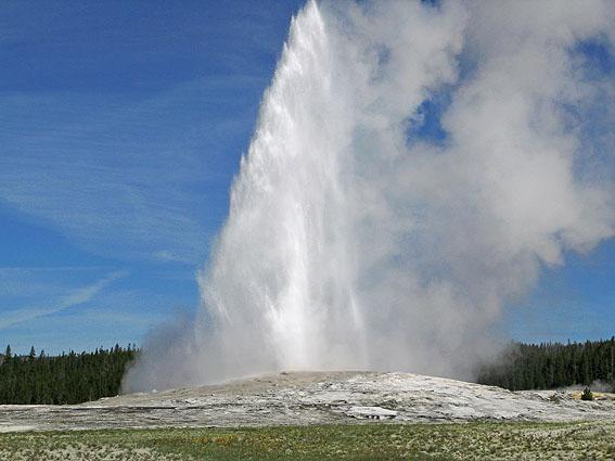 """Old Faithful"". Yellowstone N P (U)"