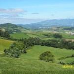 Azoriskt landskap