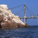 Båtbryggan. Islas Ballestas