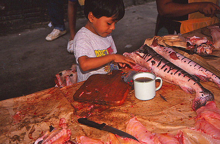 Marknaden. Iquitos