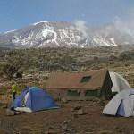 Vandring i Kilimanjaro National Park (U)