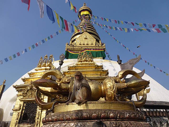 Swayumbunath, Aptemplet. Kathmandu. Nepal