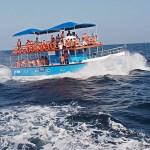 Valskådningsbåt. Mirissa