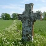 Medeltida stenkors. Dalhem. Gotland