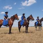 Noniushästar. Pustan. Hortobagy National Park (U)