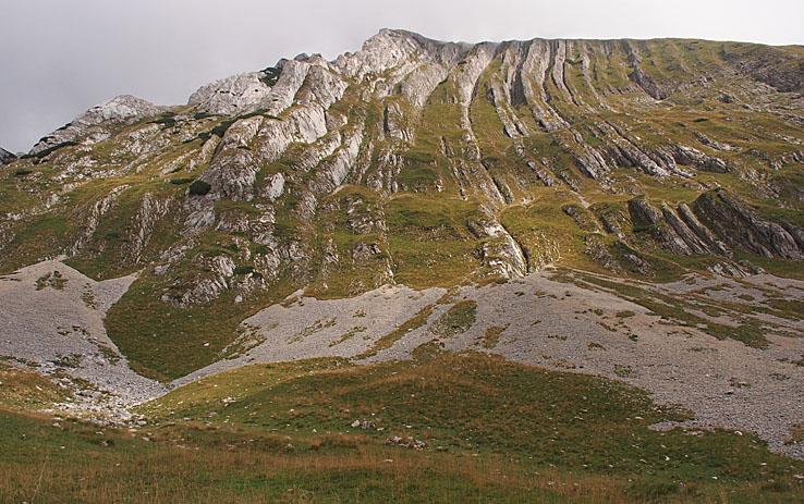 Berget Prutas, 2 393 möh. Durmitor N P (U)