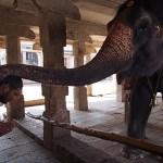 Templet Virupaksha. Hampi