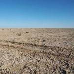 På dammiga vägar till Aralsjön