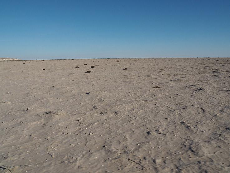 Aralsjöns botten