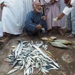 Fiskmarknaden. Barka