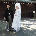 Shintobröllop. Templet Meiji-jingu. Tokyo