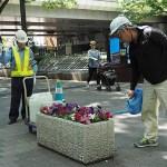 Varning för blomstervattnare! Tokyo