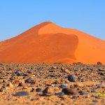 Sanddyn i Namiböknen. Sossusvlei (U)