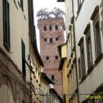 Torre e Palazzo Guingi. Lucca