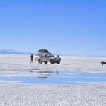Salar de Uyuni, saltöknen