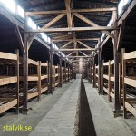 Kvinnlig sovbarack. Koncentrationslägret Birkenau