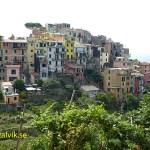 Byn Corniglia, Cinque Terre (U)
