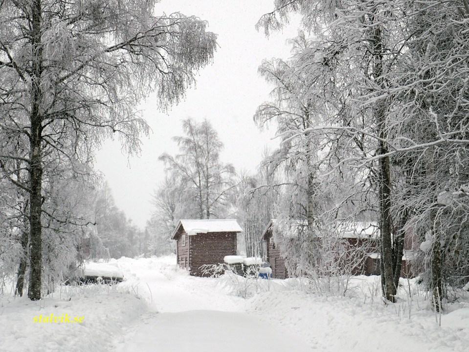 Vinter i Dalarna. Skattlösberg