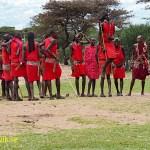 Dansande massajer. Masai Mara