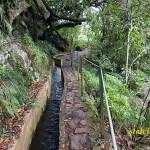 Vandring Levada do Furado. Ribeiro Frio till Portela
