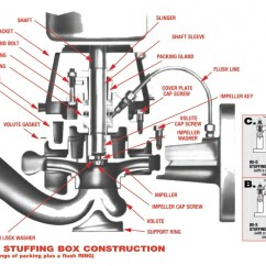 Centrifugal Pump Mechanical Seal Diagram 66 Mustang Dash Wiring Bell And Gossett Series 80 In Line Pumps