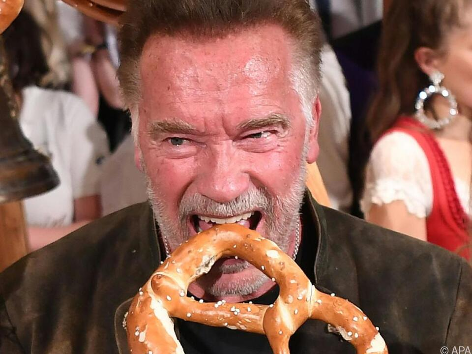 Arnold Schwarzenegger Terminator Im Back