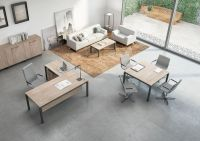 Contemporary Shared Office Desks