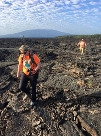 Mycket lava