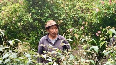 Farmer på hacienda La Antigua